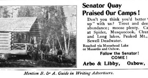 In Pine Tree Jungles - Arbo & Libby 1902